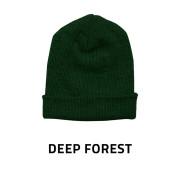 Beanie-Baggy-DeepForest